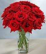 Ulus Ankara anneler günü çiçek yolla  Sevdiklerinize özel ürün 12 adet cam içerisinde kirmizi gül