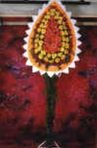 dügün açilis çiçekleri
