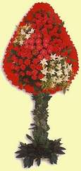dügün açilis çiçekleri  Ulus Ankara çiçek yolla