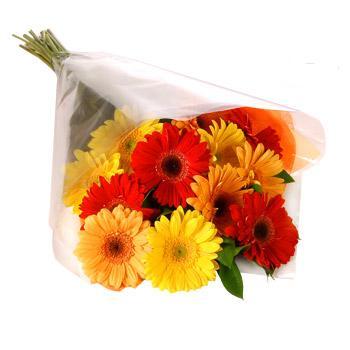 Karisik renklerde gerbera buketi  Ulus Ankara yurtiçi ve yurtdışı çiçek siparişi