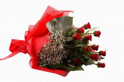Ulus Ankara anneler günü çiçek yolla  11 adet kirmizi gül buketi çiçekçi