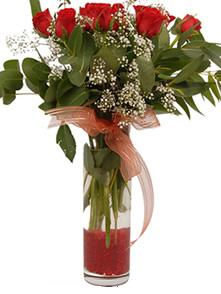Ulus Ankara online çiçekçi , çiçek siparişi  11 adet kirmizi gül vazo çiçegi
