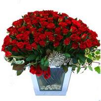 Ulus Ankara çiçek online çiçek siparişi   101 adet kirmizi gül aranjmani