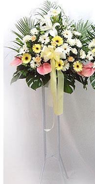 Ulus Ankara kaliteli taze ve ucuz çiçekler   perförje çiçegi dügün çiçekleri