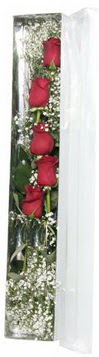 Ulus Ankara anneler günü çiçek yolla   5 adet gülden kutu güller