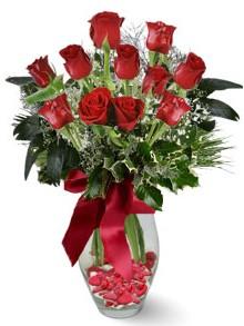 9 adet gül  Ulus Ankara hediye sevgilime hediye çiçek  kirmizi gül