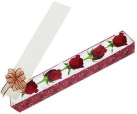 Ulus Ankara hediye sevgilime hediye çiçek  kutu içerisinde 5 adet kirmizi gül