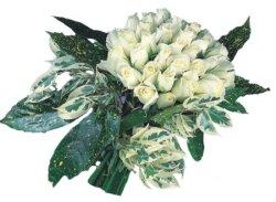 Ulus Ankara çiçek servisi , çiçekçi adresleri  9 Beyaz gül Özel kisiler için