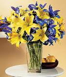 Ulus Ankara İnternetten çiçek siparişi  Lilyum ve mevsim  çiçegi özel