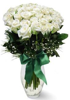 19 adet essiz kalitede beyaz gül  Ulus Ankara çiçek online çiçek siparişi