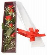 kutu içinde 5 adet kirmizi gül  Ulus Ankara çiçek servisi , çiçekçi adresleri