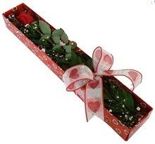Tek kirmizi gül kutu içerisinde  Ulus Ankara çiçek , çiçekçi , çiçekçilik