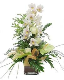 Ulus Ankara çiçekçi telefonları  cam vazo içerisinde 1 dal orkide çiçegi
