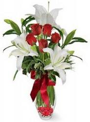 Ulus Ankara çiçek mağazası , çiçekçi adresleri  5 adet kirmizi gül ve 3 kandil kazablanka