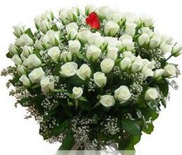 Ulus Ankara hediye sevgilime hediye çiçek  100 adet beyaz 1 adet kirmizi gül buketi