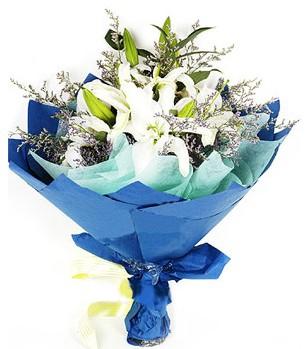 Ulus Ankara İnternetten çiçek siparişi  4 adet dal kazablankadan görsel buket
