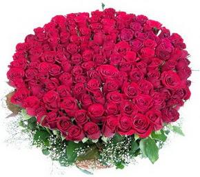 Ulus Ankara hediye çiçek yolla  100 adet kırmızı gülden görsel buket