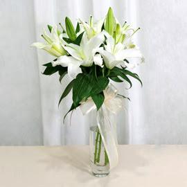 Ulus Ankara İnternetten çiçek siparişi  2 dal kazablanka ile yapılmış vazo çiçeği