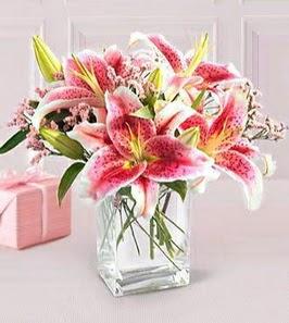 2 dal kazablanka görsel vazosu  Ulus Ankara anneler günü çiçek yolla
