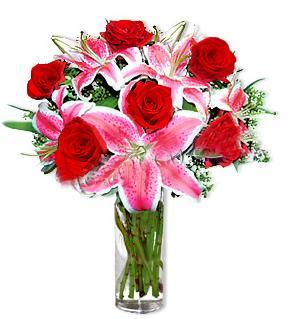 1 dal cazablanca ve 6 kırmızı gül çiçeği