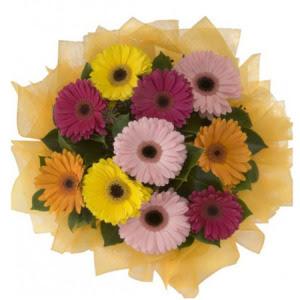 11 adet karışık gerbera çiçeği buketi