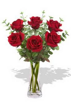 Ulus Ankara 14 şubat sevgililer günü çiçek  6 kırmızı gül vazosu