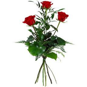 Ulus Ankara online çiçekçi , çiçek siparişi  3 adet kırmızı gülden buket