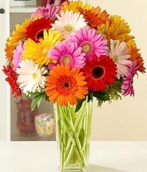 Ulus Ankara çiçek gönderme  15 adet gerbera çiçek vazosu