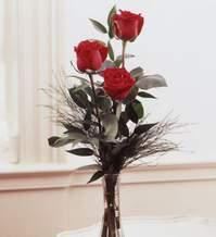 Ulus Ankara hediye sevgilime hediye çiçek  Vazoda 3 adet güzel gül