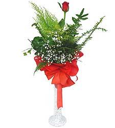 Ulus Ankara İnternetten çiçek siparişi  Cam vazoda masum tek gül