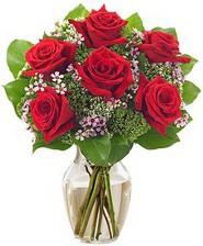 Kız arkadaşıma hediye 6 kırmızı gül  Ulus Ankara çiçek servisi , çiçekçi adresleri