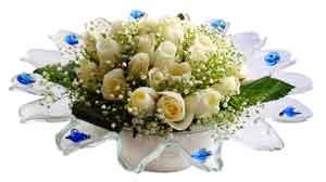 Ulus Ankara çiçek yolla  11 adet Beyaz güller özel cam tanzim