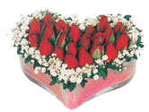 mika kalpte kirmizi güller 9