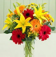 1 dal kazablanka ve 9 adet gerbera çiçek vazosu