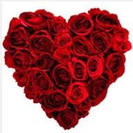 Ulus Ankara online çiçekçi , çiçek siparişi  19 adet kırmızı gülden kalp tanzimi