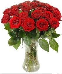 Ulus Ankara çiçekçi telefonları  Vazoda 15 adet kırmızı gül tanzimi