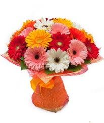 Renkli gerbera buketi  Ulus Ankara İnternetten çiçek siparişi