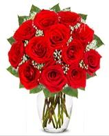 12 adet vazoda kıpkırmızı gül  Ulus Ankara güvenli kaliteli hızlı çiçek