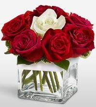 Tek aşkımsın çiçeği 8 kırmızı 1 beyaz gül  Ulus Ankara online çiçekçi , çiçek siparişi