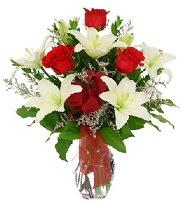 5 adet kırmızı gül ve 1 dal kazablanka  Ulus Ankara anneler günü çiçek yolla