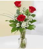 Vazo içerisinde 3 adet kırmızı gül