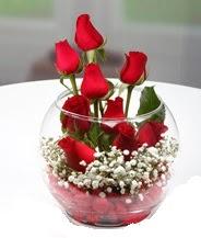 Cam fanus içerisinde 9 adet kırmızı gül  Ulus Ankara çiçek mağazası , çiçekçi adresleri