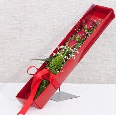 Kutu içerisinde 3 adet kırmızı gül  Ulus Ankara kaliteli taze ve ucuz çiçekler