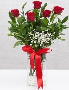 cam vazo içerisinde 5 adet kırmızı gül  Ulus Ankara yurtiçi ve yurtdışı çiçek siparişi