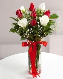 5 kırmızı 4 beyaz gül vazoda  Ulus Ankara yurtiçi ve yurtdışı çiçek siparişi