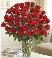 Cam vazoda 51 kırmızı gül süper indirimde  Ulus Ankara online çiçekçi , çiçek siparişi