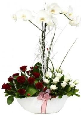 Tek dal beyaz orkide 8 beyaz 8 kırmızı gül