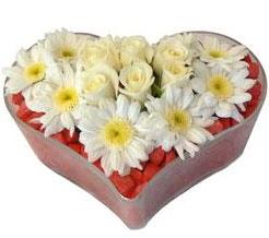 Kalp içerisinde 7 beyaz gül ve papatyalar  Ulus Ankara hediye sevgilime hediye çiçek