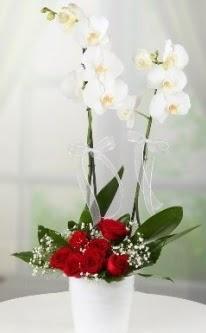 2 dallı beyaz orkide 7 adet kırmızı gül  Ulus Ankara çiçek yolla , çiçek gönder , çiçekçi