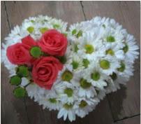 3 adet kırmızı gül mika kalptte papatyalar  Ulus Ankara hediye sevgilime hediye çiçek